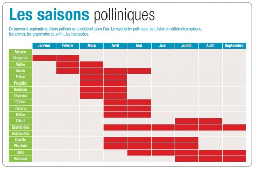 calendrier pollens